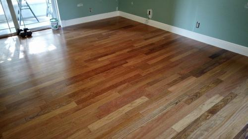 Norma glue down hardwood